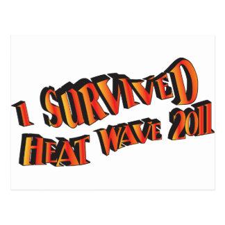 Bolso del superviviente 2011 de la ola de calor postal