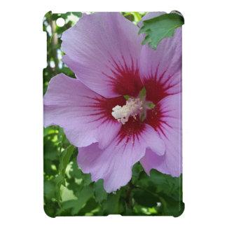Bonito de la flor en rosa