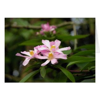 Bonito en rosa tarjeta pequeña