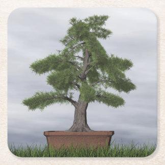 Bonsais del árbol del enebro del templo - 3D Posavasos De Papel Cuadrado