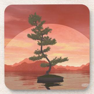 Bonsais del pino - 3D rinden Posavasos