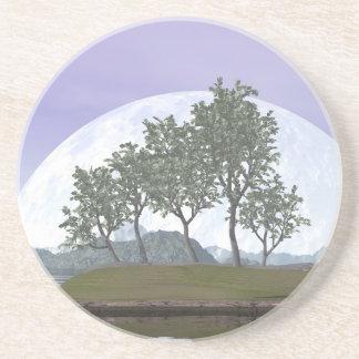 Bonsais del pino - 3D rinden Posavasos De Arenisca