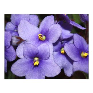 Boquet violeta invitación