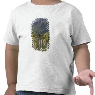 Bora Bora, escena de la costa de Polinesia Camisetas
