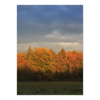 Borde de bosque invitación 13,9 x 19,0 cm