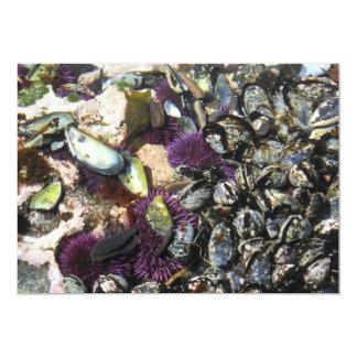 Borde de las aguas en la costa de Oregon Invitación 12,7 X 17,8 Cm