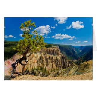 Borde del barranco de Yellowstone Tarjeta De Felicitación