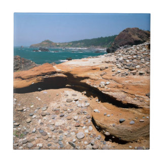 Borde del camino de la nutria de la erosión de la  teja