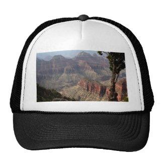 Borde del norte del Gran Cañón, Arizona, los Gorro De Camionero