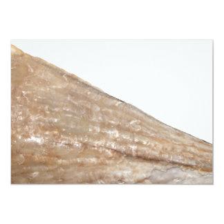 Borde del Seashell. Ciérrese encima de cuadro Invitación 12,7 X 17,8 Cm