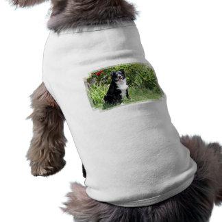Border collie - arroz - Pasten Camiseta Sin Mangas Para Perro
