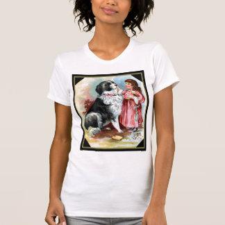 Border collie con la camiseta del vintage de la