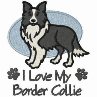 Border collie del amor