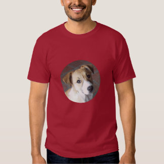 Border collie del volquete camisetas