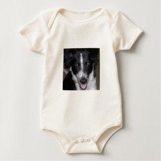Border collie trajes de bebé