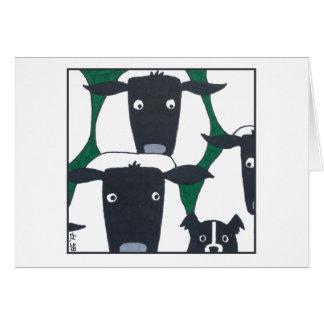 Border collie y ovejas tarjeta
