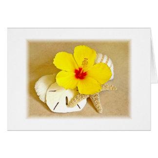 Bordes suaves del hibisco y de los Seashells Tarjeta