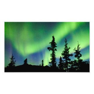 Borealis intensos de la aurora sobre taiga de la p arte fotográfico