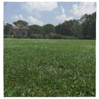 Bosphorus verde U. Servilleta De Tela