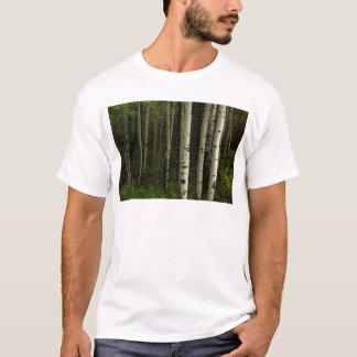Bosque blanco camiseta