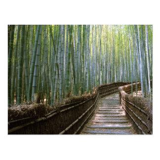 Bosque de bambú en Kyoto Postal