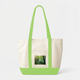 Bosque de la ladera bolsas