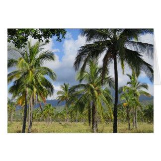 Bosque de la palma de coco tarjeta de felicitación