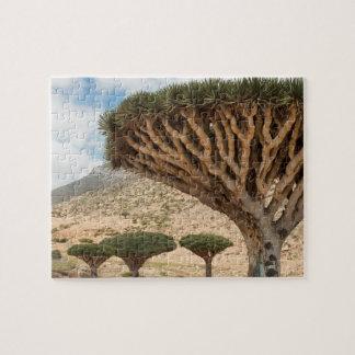 Bosque del árbol de la sangre de dragón, isla de puzzle