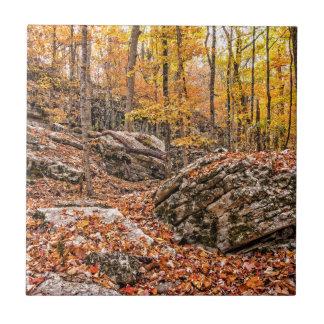 Bosque hermoso del otoño azulejo de cerámica