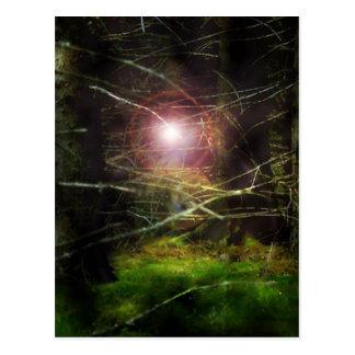 Bosque místico postal
