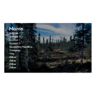 Bosque Spruce creciente abierto bajo Plantilla De Tarjeta De Negocio