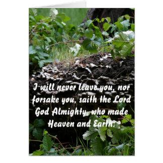 Bosque tarjeta de la promesa