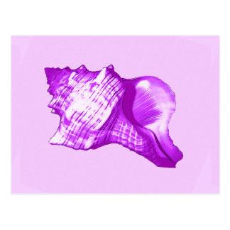 Bosquejo de la cáscara de la concha - violeta, postal