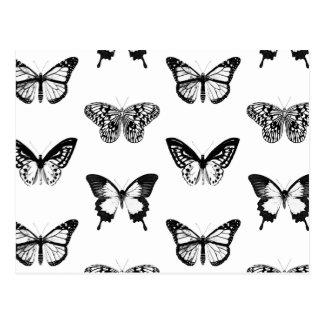 Bosquejo de la mariposa, blanco y negro postal