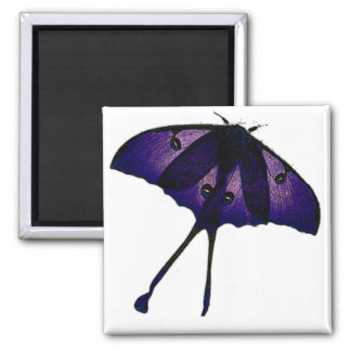 Bosquejo púrpura de la fotografía del dibujo de la imanes para frigoríficos