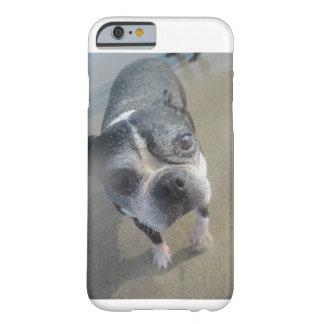 bostie en el caso del iphone de la playa funda de iPhone 6 barely there