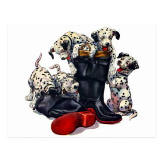 Botas del bombero llenadas de los Dalmatians Postal