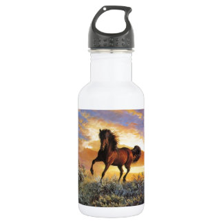 Botella De Agua Caballo corriente