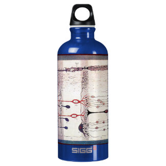 Botella De Agua Cajal