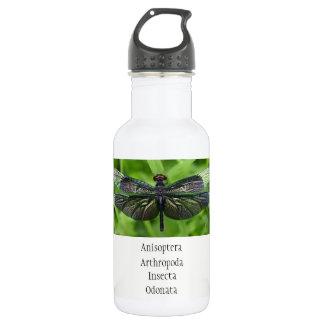 Botella De Agua Ciencia de la libélula