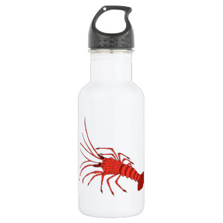 Botella de agua de la gamba