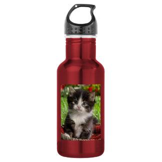botella de agua del gato