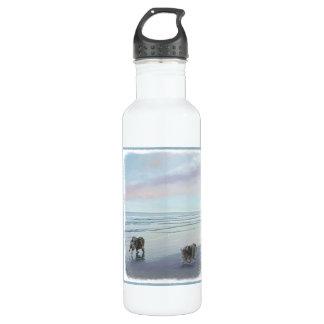 Botella De Agua Keeshonds en la costa
