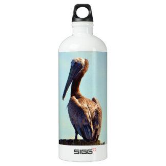 Botella De Agua Pelícano de Luisiana