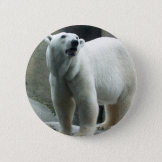 Botón blanco del oso polar
