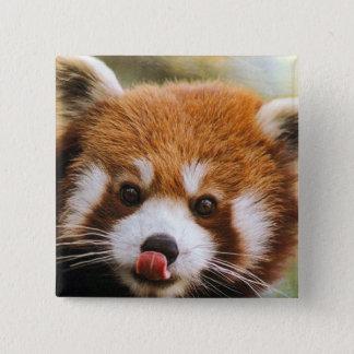 Botón cuadrado de la panda roja