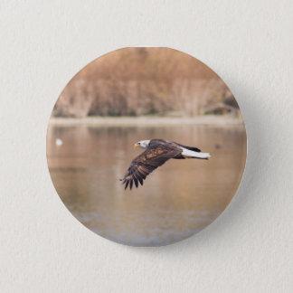 Botón de Eagle del vuelo