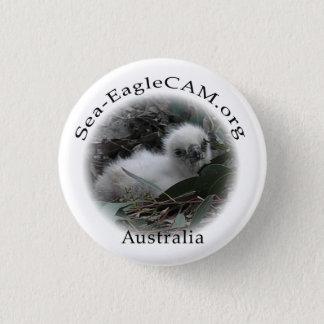 Botón del Hatchling de Mar-Eagle