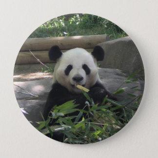 Botón del oso de panda