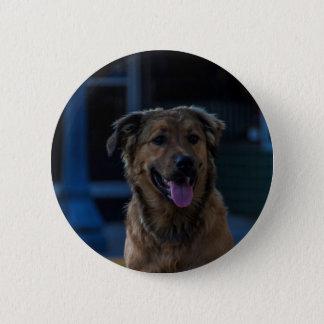 Botón del perro